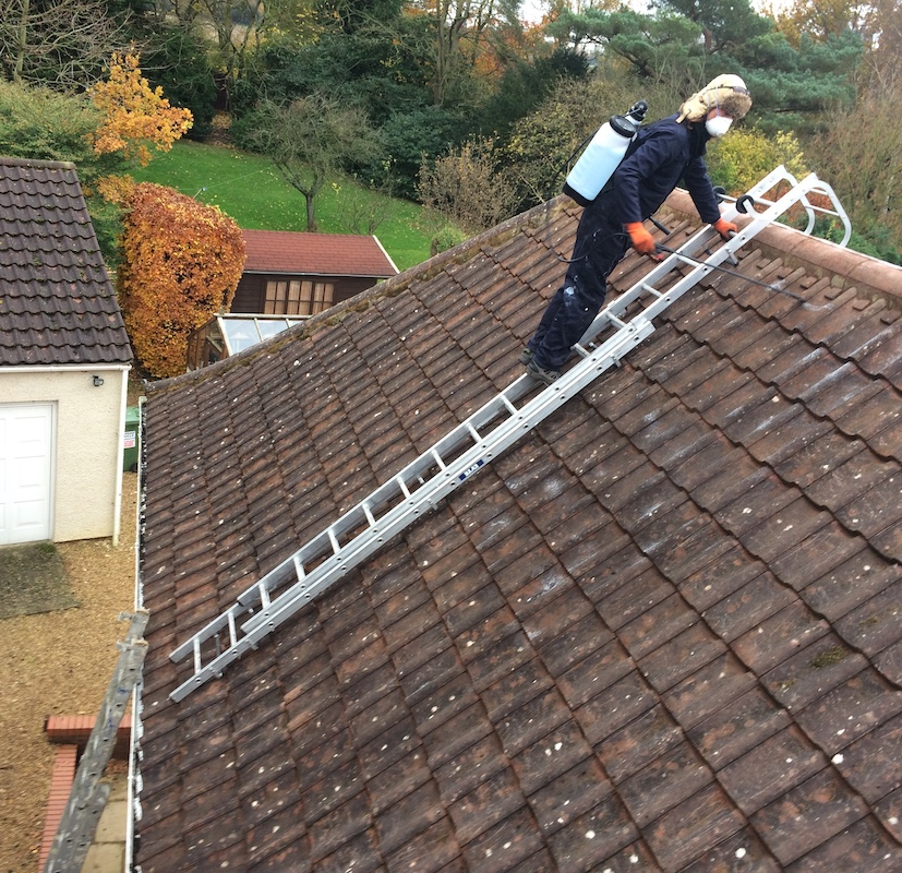 About Copper Strip Moss Removal Prevention Coppertop Roofing